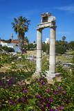 Agora, Kos City, Kos, Dodecanese, Greek Islands, Greece, Europe Photographic Print by Tuul