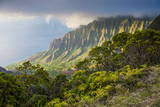 Kalalau Lookout over the Napali Coast from the Kokee State Park Photographic Print by Michael Runkel