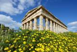 Greek Temple, Segesta, Trapani District, Sicily, Italy, Europe Photographic Print by Bruno Morandi