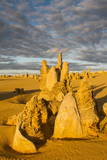 The Pinnacles Limestone Formations at Sunset Contained Photographic Print by Michael Runkel