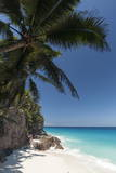 Anse Macquereau, Fregate Island, Seychelles, Indian Ocean, Africa Photographic Print by Sergio Pitamitz