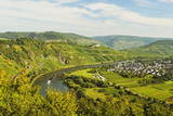 View of Moselle River (Mosel) and Puenderich Village, Rhineland-Palatinate, Germany, Europe Photographic Print by Jochen Schlenker