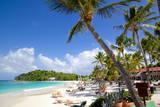 Beach and Palm Trees, Long Bay, Antigua, Leeward Islands, West Indies, Caribbean, Central America Photographie par Frank Fell