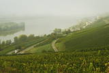 Morning Fog over the River Rhine, Near Lorch, Hesse, Germany, Europe Photographic Print by Jochen Schlenker