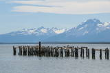 Rotten Pier at Dusk in Puerto Natales, Patagonia, Chile, South America Photographic Print by Michael Runkel