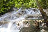Dunns River Falls, Ocho Rios, Jamaica, West Indies, Caribbean, Central America Reprodukcja zdjęcia autor Doug Pearson