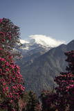 Annapurna South Photographic Print by Andrew Taylor