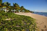 Turner's Beach, St. Mary, Antigua, Leeward Islands, West Indies, Caribbean, Central America Photographie par Frank Fell
