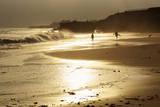 Lighthouse State Beach, Santa Cruz, California, United States of America, North America Photographie par Richard Cummins