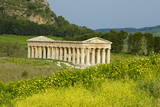 Greek Temple, Segesta, Trapani District, Sicily, Italy, Europe Photographic Print by Bruno Morandi