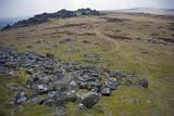 Preseli Hills (Mynyddoedd Y Preseli) Photographic Print by Duncan Maxwell