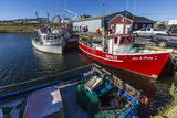 Fishing Vessels Inside the Harbor at Bonavista, Newfoundland, Canada, North America Lámina fotográfica por Michael Nolan