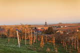 View over Vineyards to the Wine Village Burrweiler in Autumn at Sunset Photographic Print by Marcus Lange