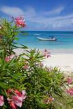 Long Bay and Beach, Antigua, Leeward Islands, West Indies, Caribbean, Central America Fotografisk tryk af Frank Fell