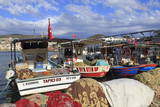 Fishing Boats in Kusadasi, Aydin Province, Anatolia, Turkey, Asia Minor, Eurasia Photographic Print by Richard Cummins