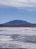 Laguna Colorada (Red Lake) Encrusted Photographic Print by Kim Walker