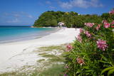 Long Bay and Beach, Antigua, Leeward Islands, West Indies, Caribbean, Central America Photographic Print by Frank Fell