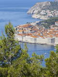 Dubrovnik Old Town, UNESCO World Heritage Site, Dalmatia, Croatia, Europe Photographic Print by Charlie Harding
