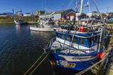 Fishing Vessels Inside the Harbor at Bonavista, Newfoundland, Canada, North America Photographic Print by Michael Nolan