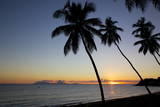 Palm Trees and Beach at Sunset Photographic Print by Frank Fell