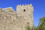 Castle of St. Peter, Bodrum, Anatolia, Turkey, Asia Minor, Eurasia Photographic Print by Richard Cummins
