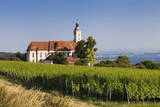 Pilgrimage Church of Birnau Abbey and Vineyards Photographic Print by Markus Lange