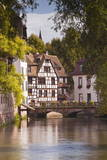 Half Timbered Houses in La Petite France Photographic Print by Julian Elliott
