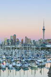 Westhaven Marina and City Skyline, Waitemata Harbour, Auckland, North Island, New Zealand, Pacific Photographic Print by Doug Pearson