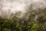 Rain Mist Rising from the Forest Canopy in Danum Valley Photographic Print by James Morgan