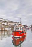 The Small Fishing Village of Mevagissey in Cornwall, England, United Kingdom, Europe Photographic Print by Julian Elliott