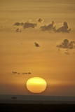 Sunrise, Serengeti National Park, Tanzania, East Africa, Africa Photographic Print by James Hager