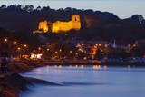Oystermouth Castle, Mumbles, Swansea Wales, United Kingdom, Europe Photographic Print by Billy Stock