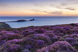 Rhossili Bay, Worms End, Gower Peninsula, Wales, United Kingdom, Europe Photographic Print by Billy Stock