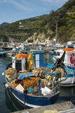 Cetara, Amalfi Coast, UNESCO World Heritage Site, Campania, Italy, Mediterranean, Europe Photographic Print by Angelo Cavalli