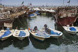 Fishing Boats and Dhows in the Old Ships Port, Kuwait City, Kuwait, Middle East Stampa fotografica di Jane Sweeney