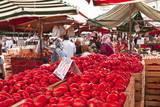 Tomatoes on Sale at the Open Air Market of Piazza Della Repubblica, Turin, Piedmont, Italy, Europe Photographic Print by Julian Elliott