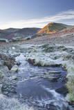 Crabtree Beck Running Down Loweswater Fell in the Lake District National Park Lámina fotográfica por Julian Elliott