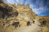 Amberd Fortress Located Photographic Print by Jane Sweeney