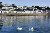St. Mawes, Cornwall, England, United Kingdom, Europe Photographic Print by Peter Groenendijk