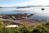 Boat and Slip at Helgoy, Troms, North Norway, Norway, Scandinavia, Europe Stampa fotografica di David Lomax