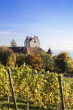 Old Castle in Autumn, Meersburg, Lake Constance (Bodensee), Baden Wurttemberg, Germany, Europe Photographic Print by Markus Lange