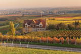 Winery in the Vineyards in Autumn at Sunset Photographic Print by Marcus Lange