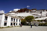 The Potala Palace, UNESCO World Heritage Site, Lhasa, Tibet, China, Asia Photographic Print by Simon Montgomery