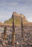 Lindisfarne Castle on Holy Island, Northumberland, England, United Kingdom, Europe Photographic Print by Julian Elliott