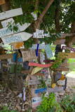 Signs on Tree at Mama Pasta'S, Long Bay, Antigua, Leeward Islands, West Indies Photographic Print by Frank Fell