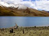 Sacred Tibetan Yamdrok Tso Lake (Yamzho Yumco) Photographic Print by Simon Montgomery