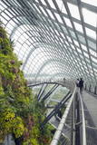 Canopy Walkway, Gardens by the Bay, Cloud Forest, Botanic Garden, Singapore, Southeast Asia, Asia Photographic Print by Christian Kober
