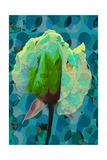 Tea Rose 2 Giclee Print by Scott J. Davis