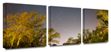 Star Trails 3-Piece Canvas Set Gallery Wrapped Canvas Set by Cody York