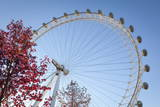 The London Eye on a Bright Sunny Day, London, England, United Kingdom, Europe Photographic Print by Charlie Harding